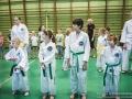 egzamin_taekwondo (1).jpg
