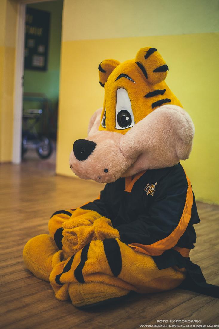 BAT Tygrysy (17).jpg