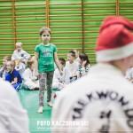 turniej taekwondo belchatow (15)