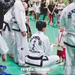 turniej taekwondo belchatow (67)