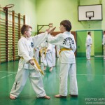egzamin_taekwondo (198)