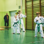 egzamin_taekwondo (244)