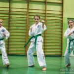 egzamin_taekwondo (267)
