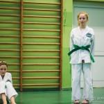 egzamin_taekwondo (306)