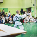 egzamin_taekwondo (37)